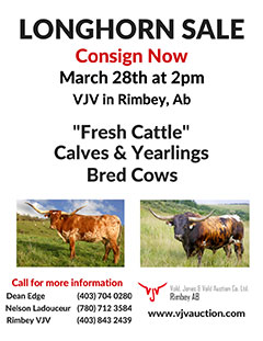 Longhorn Sale - March 28, 2017 - click to enlarge
